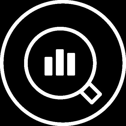 Tim Weisheit Icon Ist-Analyse weiss
